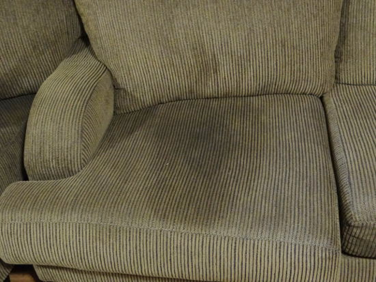 How Urine Damages Upholstery